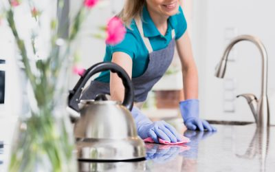 Cleaning Products Suppliers Florida | All-Purpose Cleaner vs. Heavy-Duty Degreaser
