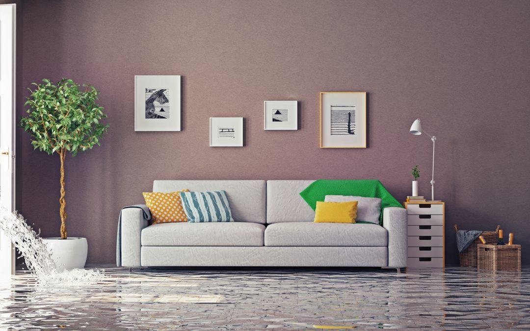 Water Damage Equipment in Florida | Water Restoration Equipment