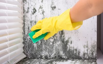 Water Damage Equipment Florida | Cleaning Up After a Natural Disaster