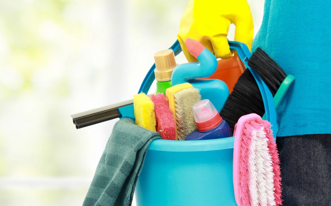 Leather Cleaning Products in Fort Myers | Leather vs Fabric Furniture Care