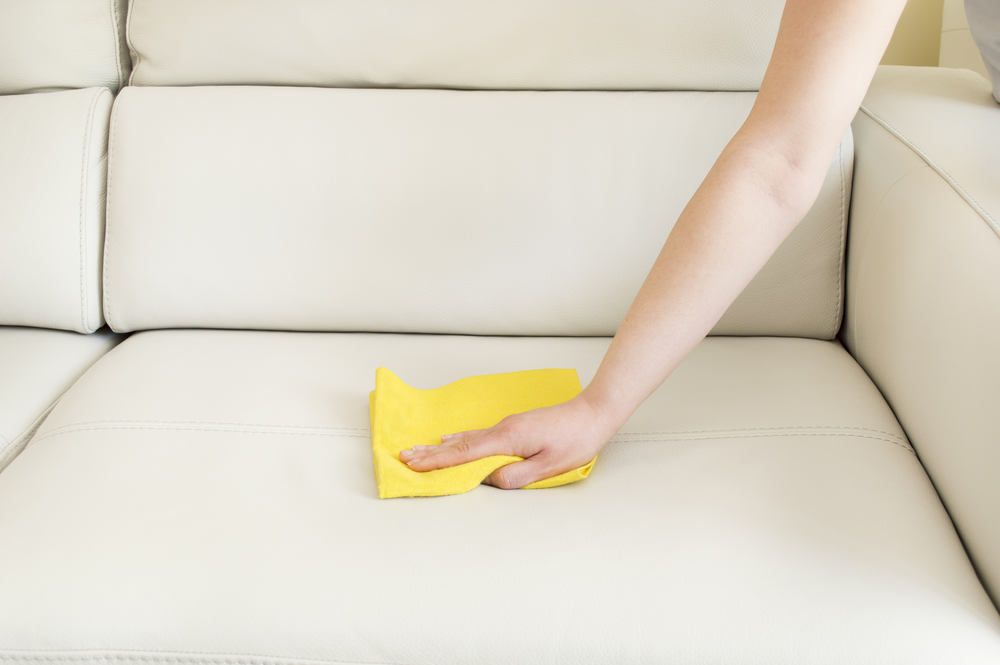 Cleaning Products Supplier Florida | Your Guide to Removing Odor from Carpets