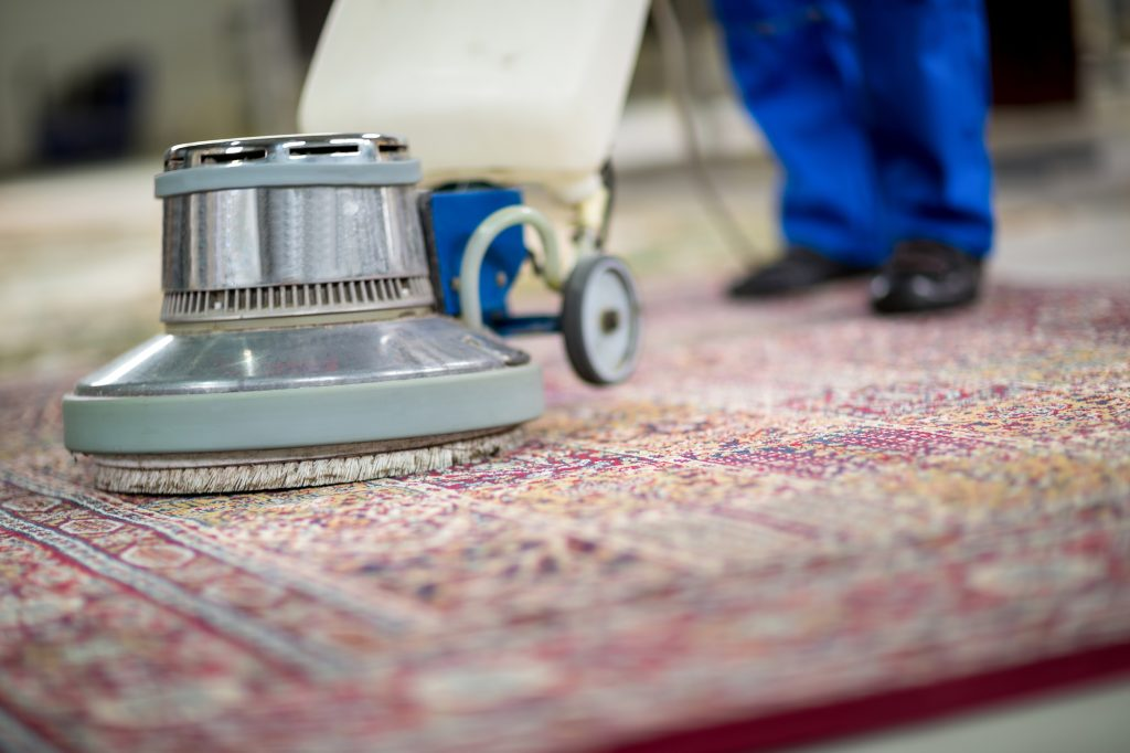 where can I get oriental rug cleaning supplies florida?